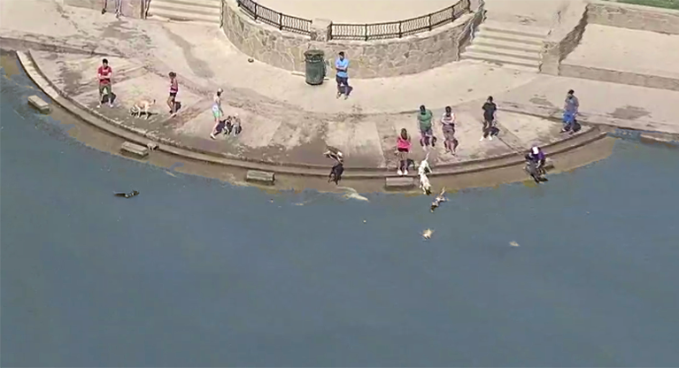 250,000-gallon raw sewage spill is heading toward White Rock Lake in Dallas